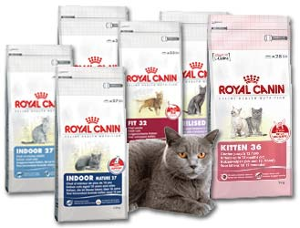 royal canin chat ustensiles de cuisine. Black Bedroom Furniture Sets. Home Design Ideas